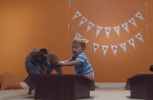 It's Dogs Vs Babies in Big Lots' Ultimate Battle for Cuteness