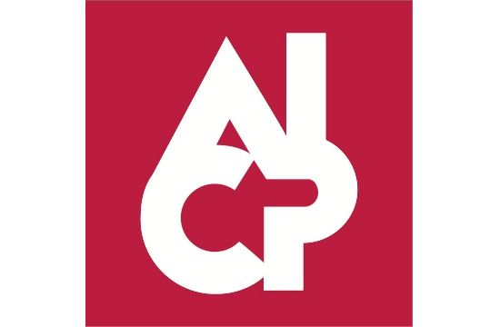 2013 AICP Show Curatorial Committee Announced