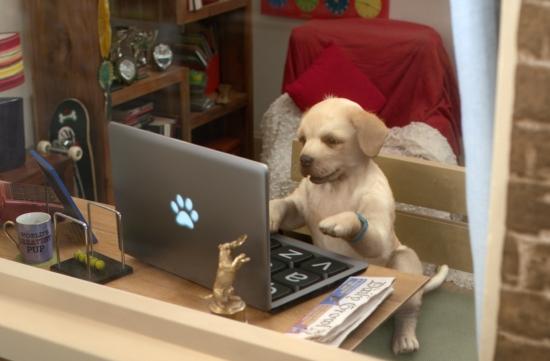 Framestore reinvents the Andrex puppy