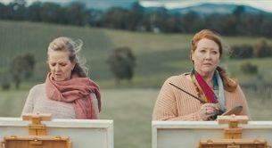 Purple Bricks' New Campaign Gets Artistic 'Aussie Style'