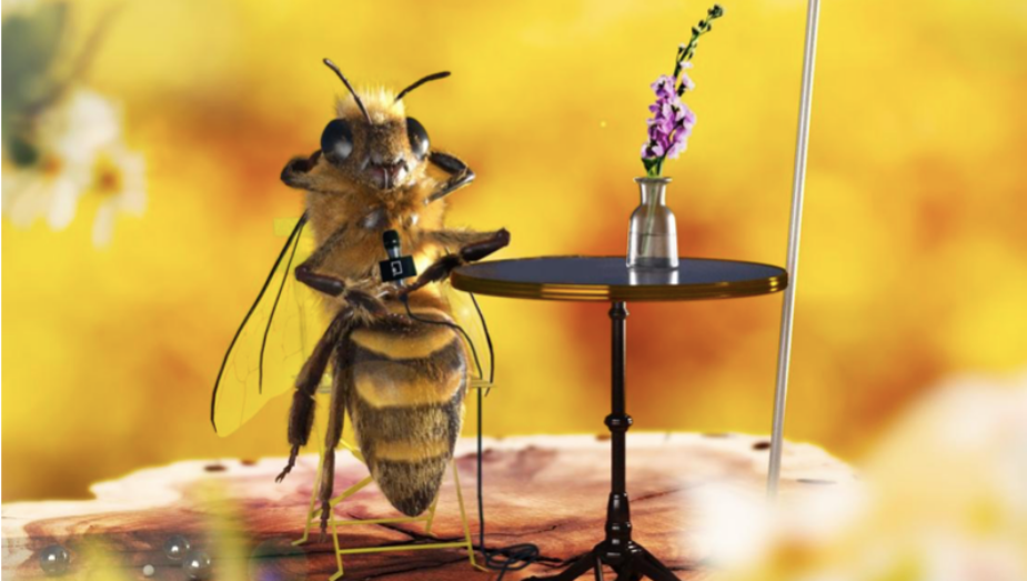 Hot Buzz: How Bee_nfluencer Swarmed Instagram (with a Little Help from Publicis)