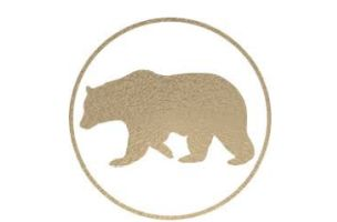 Biorna Quantics Selects AnalogFolk as Global Digital Agency of Record