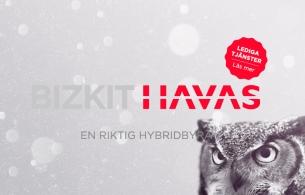 Havas Worldwide Adds New Subsidiary Biskit Havas in Sweden