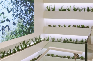 BETC Design Brings a Botanical Invasion to Yves Rocher Concept Store