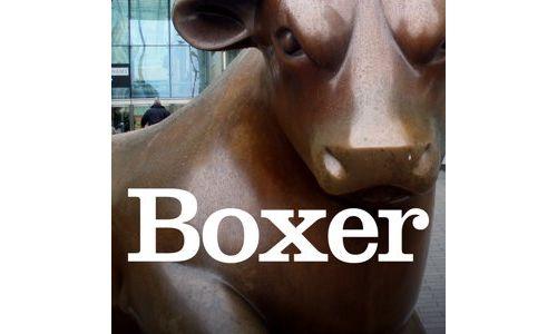 Boxer Introduces Cultural Design for Global Brands
