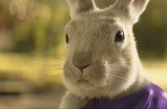 Your Shot: Cadbury 'Easter Bunny'