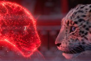 WIZZ Lights Up Paris and New York This Christmas With AKAMA & Publicis 133