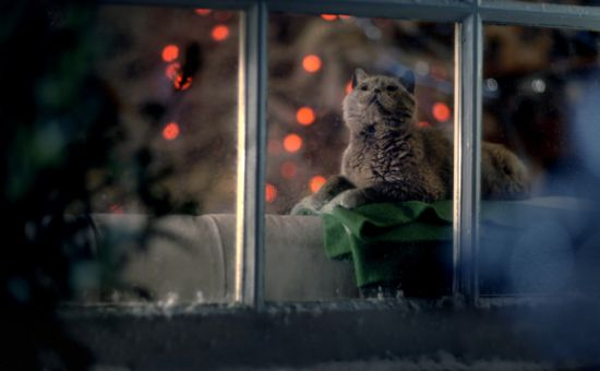 Christmas in the Air In Quality Street's Festive Blizzard from J Walter Thompson