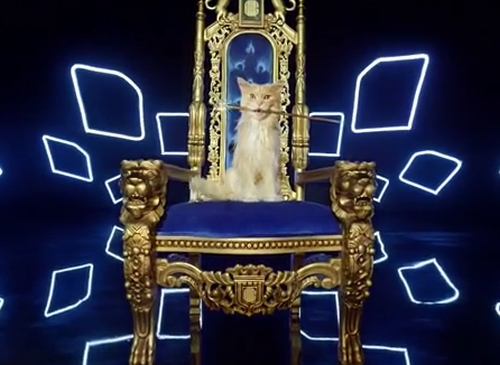 O2's Cat-Dog Lives the Hip-Hop High Life in New Campaign