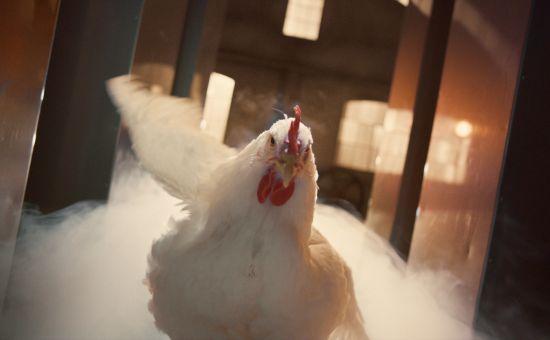 Badass Mother Clucker Struts Her Stuff to DMX in KFC Campaign