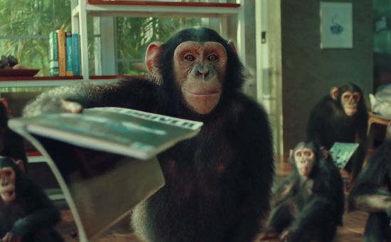 Chimpanzees Have Zero Chill in this Mischievous Indian Air Con Ad