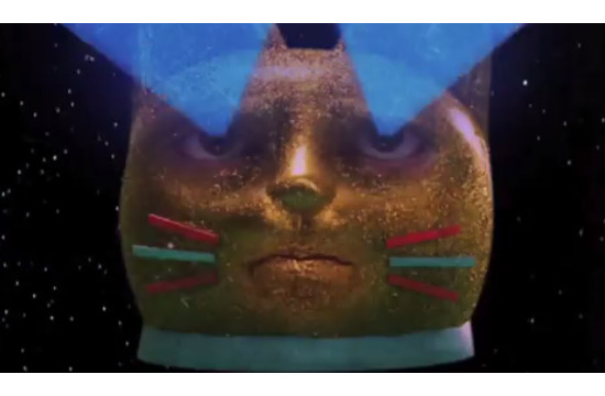 Stefan Sagmeister Submits Art to Laser Cat