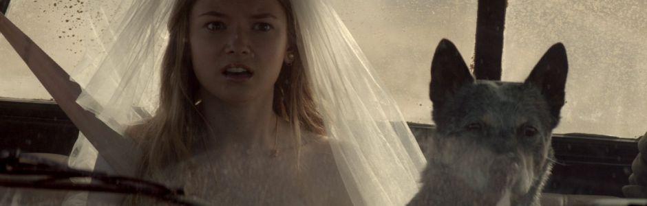 Leo Burnett's Shot Gun Wedding Adventure for Firestone
