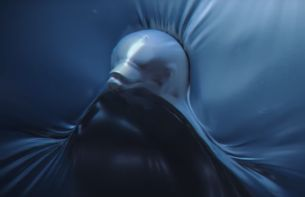 Sea Animals Struggle in a Plastic Ocean in This Distressing PSA