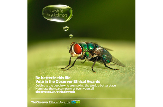 'The Observer Ethical Awards'