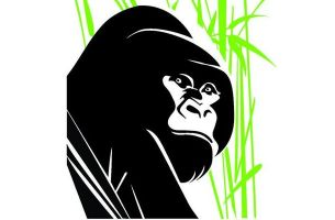 LIA Launches Creative Competition to Save the Mountain Gorillas
