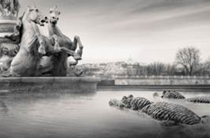 Publicis Conseil Goes Wild in Town for the Paris Zoo
