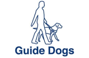 Proximity London Wins Guide Dogs UK Brief
