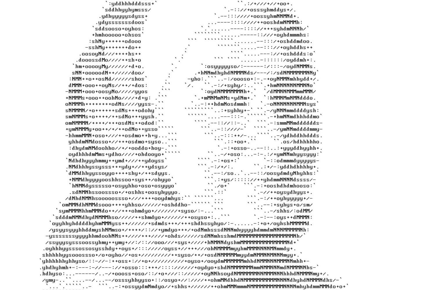 72andSunny Amsterdam Hides HackYourFuture Graduates' Portraits in Website Code
