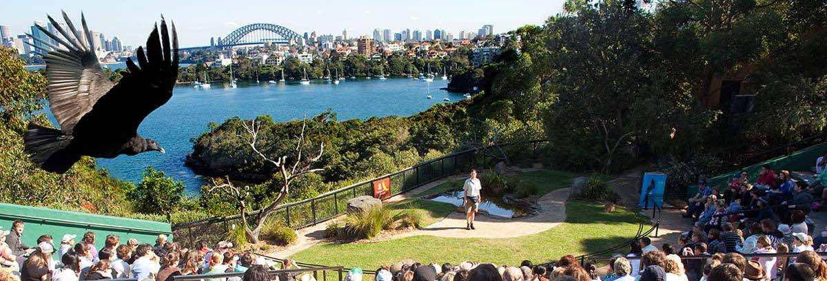 Taronga Zoo Re-appoints TBWA Sydney as Creative Agency