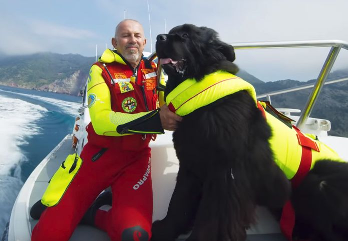 Superpowered Pooches Are the Stars of This IMAX Feature Film