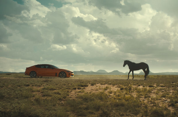 Kia's New Stinger GTS Faces off against a Wild Horse in Scenic Campaign