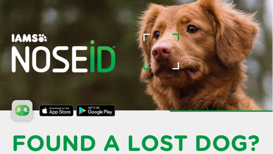 Problem Solved: How adam&eveDDB and IAMS Pioneered Nose Identification Tech to Help Find Lost Dogs