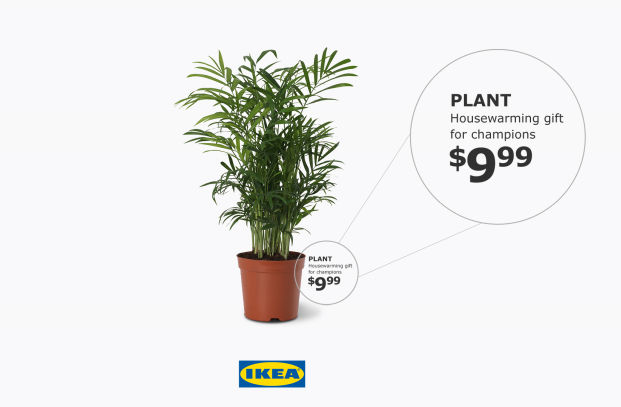 IKEA Celebrates Toronto Basketball Champions with Housewarming Plants