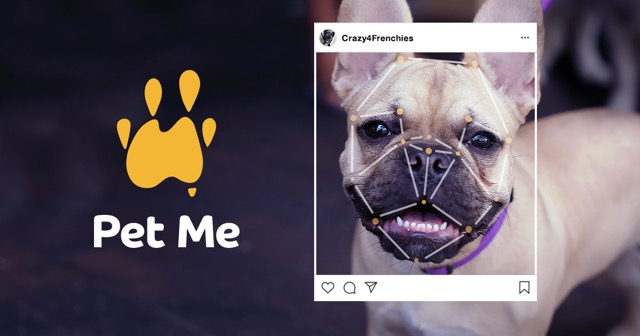 A Dog Obsessed AI Is Helping Pets Get Adopted All Across Australia