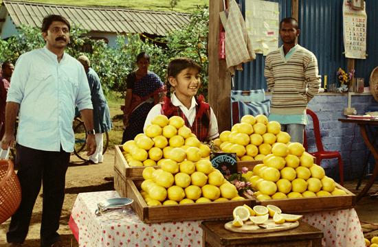 HSBC 'The Lemon Grove' by JWT London