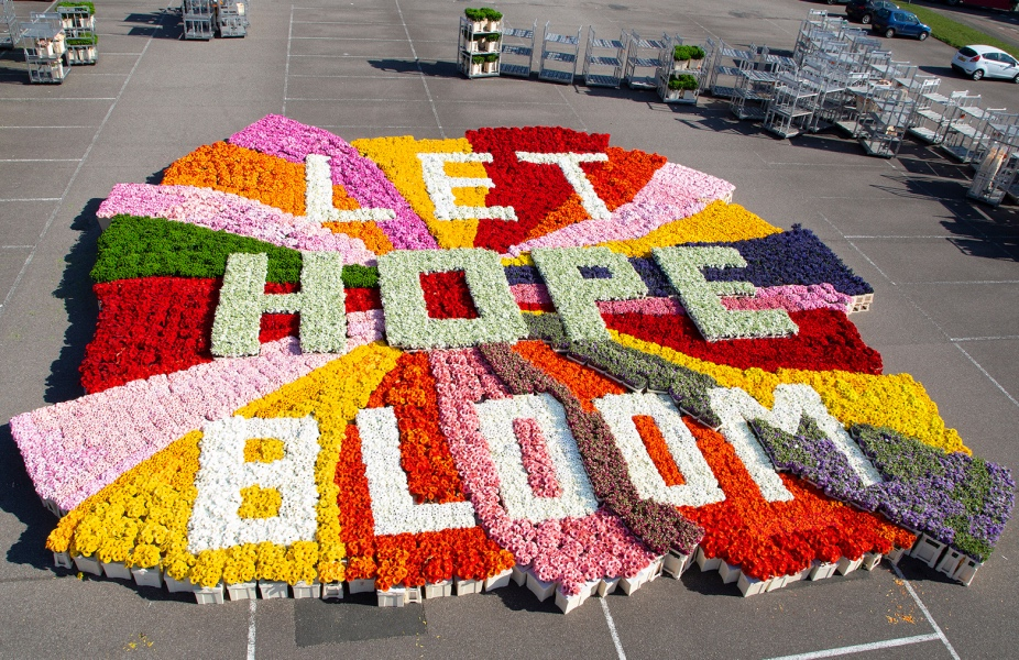 Your Shot: For the Flower Council Doing Nothing or Moving Too Slowly was Simply Not an Option