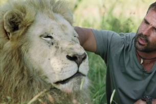 How Fixodent & Saatchi Italy Gave an Old White Lion His Bite Back
