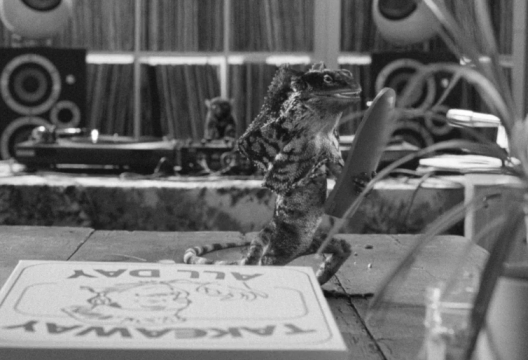 A Less Than Thrilled Lizard in JWT London's First Direct Spot