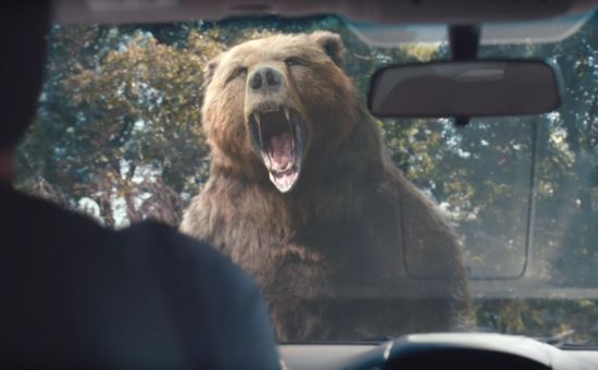 McCann NY and Lysol Reveal Fiercely Protective Ani-moms in New Campaign