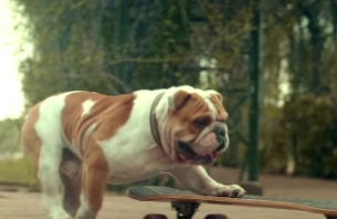 Skateboarding Bulldog Features in 'Runderful' New Mizuno Shoes Spot