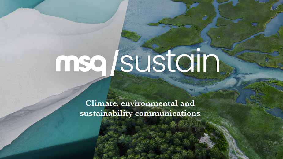 MSQ Launches Sustainability Offer and Successfully Becomes a Carbon Negative Business