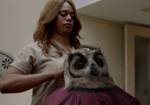 Owl Is The New Black in Hilarious New Virgin Media Campaign
