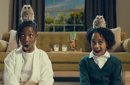 Fluffy, Baby Owl Joins McVitie's 'Sweeet' Family in BN 'The Cheeky Wink'