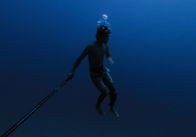 Breathtaking Short Highlights the Horrors of Climate Change and Marine Pollution