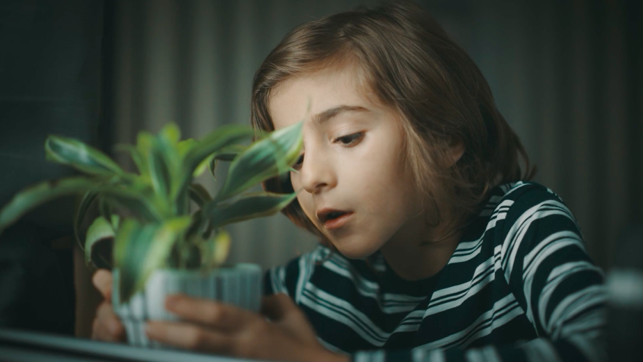 electriclimefilms Tells the Story of a Boy and His Plant in Nostalgic Spot