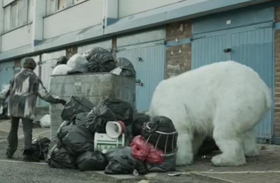 A Homeless Polar Bear In the Streets Of London