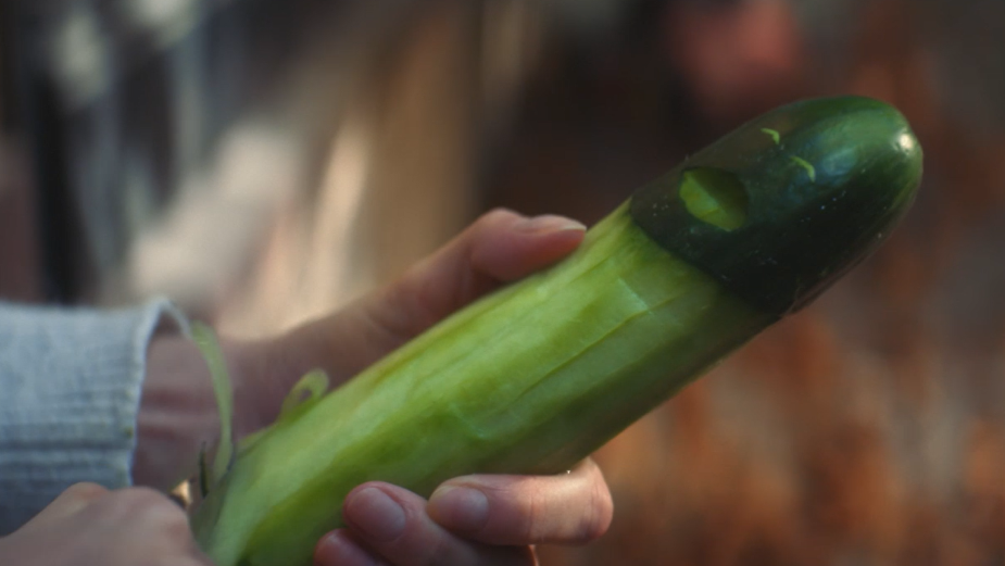 Cucumbers and Coconuts Are Fed Up of Being Used for Sex in Pornhub Spot