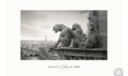 Publicis Conseil Brings the Wilderness to Paris Streets