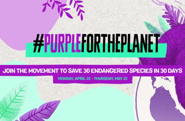 Why You Should Dye Your Hair Purple to Help Save the Planet