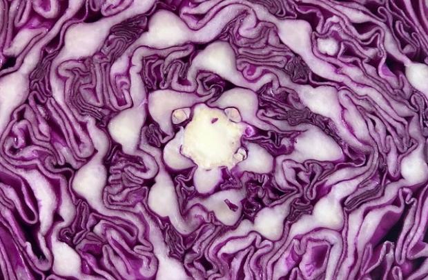 Feed: Ramaa Mosley's Tale of Ashram Fermentation