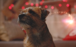 The Mob Brings a Touch of Christmas Magic to New Poundland Spot