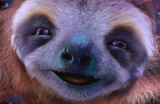 W+K and Three's Dolph-a-sloth is the Cutest Thing You'll See Today