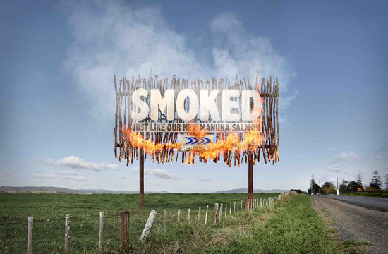 Saatchi NZ's Smoking Billboard for Sealord's Smoked Salmon