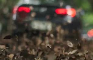 Nicholas Berglund's Michael Krautter Lenses Striking New Buick Films