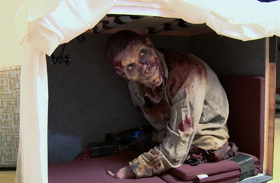 Superfan Spooks Walking Dead Actor